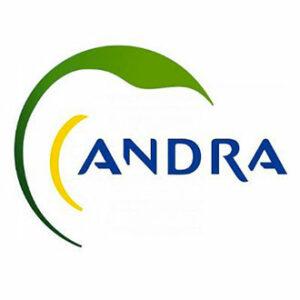 Logo-ANDRA